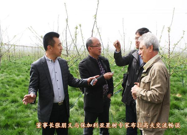 省农业厅领导到示范园考察