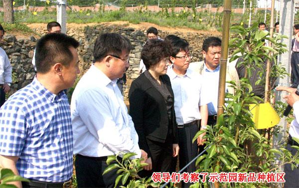 烟台日报社和烟台农科院果业技术研究所在烟台