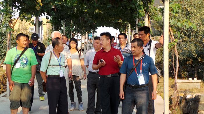 与山东农业大学园艺科学与工程学院吴树敬教授探讨