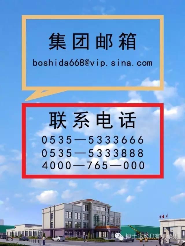"""热烈祝贺kok软件达集团""""BSD""""商标荣获山东省著名商标证书"""