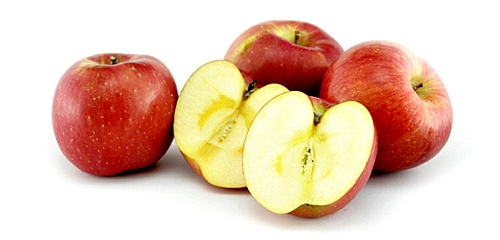 2016kok软件达果树认领及苹果认筹活动