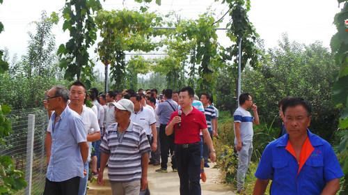 甘肃省庆阳市委组织部带领当地农业培训班学员参观考察kok软件达集团