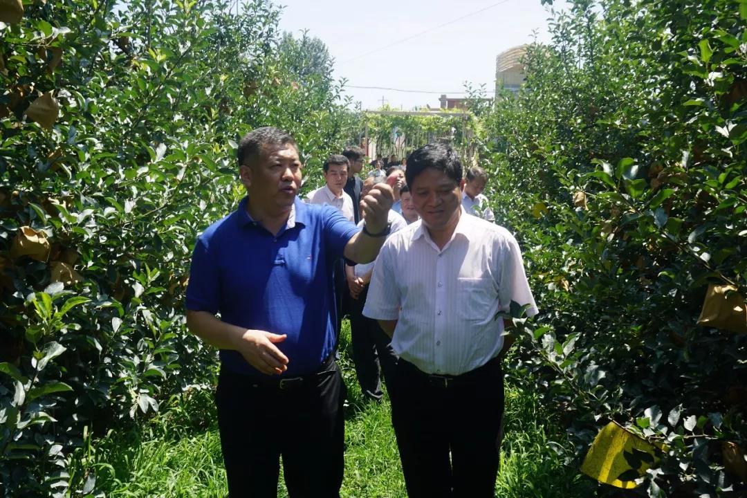 新农创投资发展有限公司副总裁一行到烟台kok软件达集团参观考察