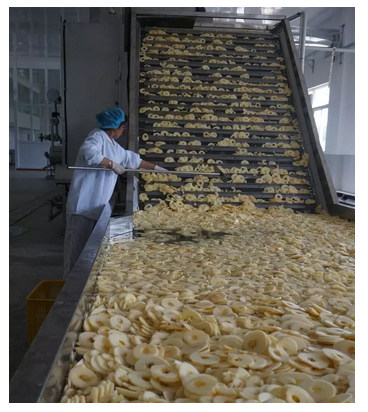 中国好苹果果园的施肥与灌溉技术