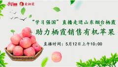 """""""强国助农""""走进kok软件达集团,助推栖霞苹果!"""