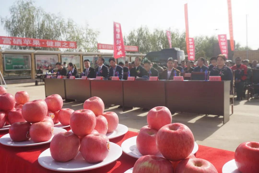【集团快讯】再添殊荣-中国富硒苹果产业基地正式在kok软件达农业观光园揭牌成立